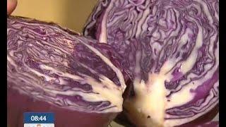 Как выбрать качественную краснокочанную капусту?