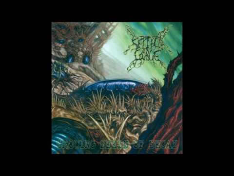 Septycal Gorge - Growing Seeds Of Decay - (2006) [Full album]