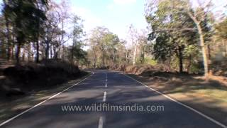 Travelling by road from Jabalpur to Kanha