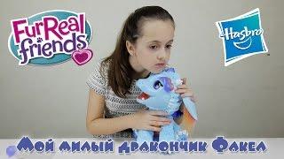 видео Hasbro Furreal Friends B5142 Милый дракоша