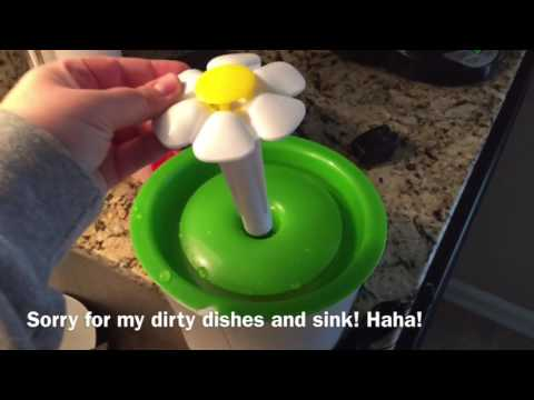 Catit Flower Fountain unboxing and setup video