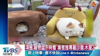 設計師打造「寵物共宅」 搶百億毛小孩商機