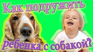 Как ПОДРУЖИТЬ ребенка с собакой? РАЗВЛЕкаТЕльНОе видео ДЛЯ детей и их РОДИТЕЛЕЙ!