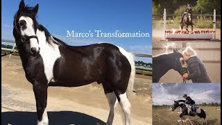 Marco's Transformation