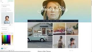 TheBlogger WordPress Theme - Live Customizer