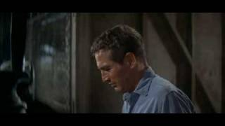 Cool Hand Luke - night in the box