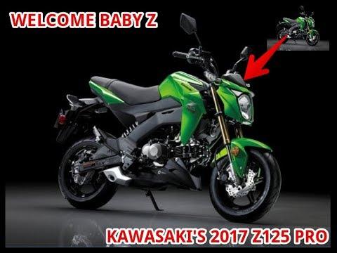 Welcome Baby Z Kawasaki's 2017 Z125 Pro