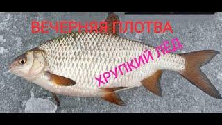 ПЛОТВА НА МОРМЫШКУ Вечерняя рыбалка
