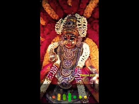 thanga-nila---tamil-and-malayalam-ayyappan-whatsapp-status-tamil-சுவாமியே-சரணம்-ஐயப்பா-🔥-fullscreen