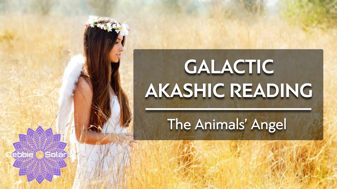 Galactic Akashic Reading   The Animals' Angel