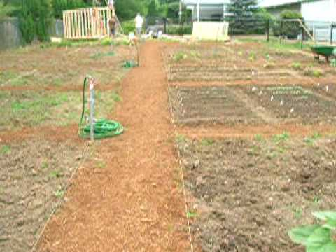Walk through the garden to the new tool shed youtube - When you walk through the garden ...