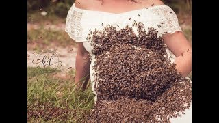 Swarm of bees covers local woman during pregnancy photoshoot