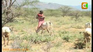 Education in Samburu