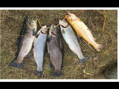 pa opening day trout fishing 2017 youtube