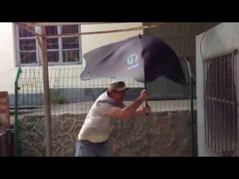 Лучший в мире зонт - Blunt. Это iPhone среди зонтов!