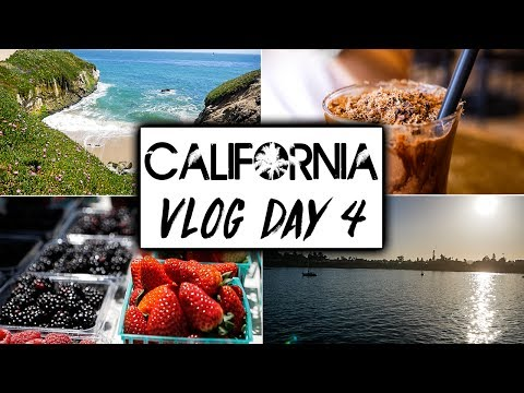 California Travel VLOG Day 4  |  Santa Cruz and PCH1 Vegan Food Vloggers