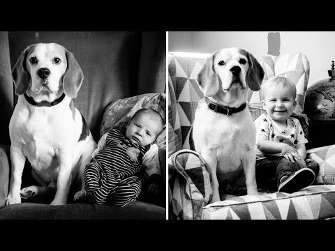 Photo Series Shows Boy Posing With His Dog Best Friend Every Month For 2 Years