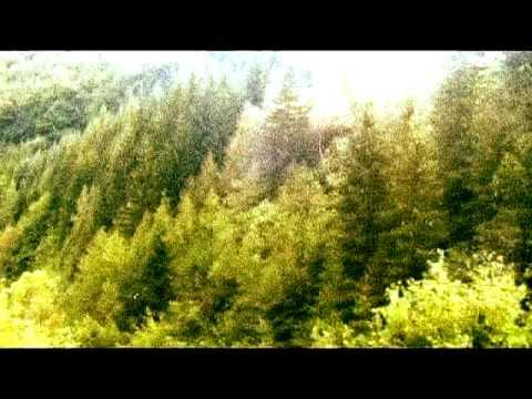 BALKANSKY - The Green Balkan Mountains