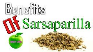 HOW  TO  Benefits  Of  Sarsaparilla 🍏