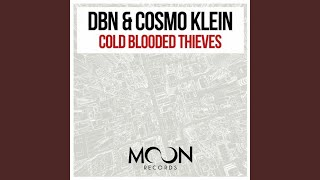 Cold Blooded Thieves (Radio Mix)