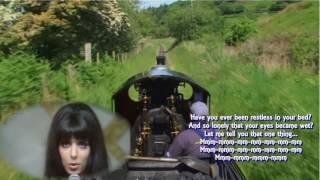 悲しき鉄道員、Never Marry a Railroad Man」ショッキングブルー、Shock...