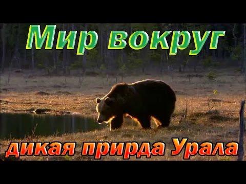 Приглашение на семинар г.Анапа пансионат Урал 15 17 апреля