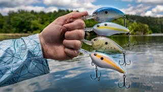 BIG Crankbaits Catch BIG Bass (Ledge Fishing Crazy Action)