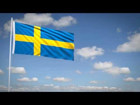 Studio3201 - Animated flag of Sweden