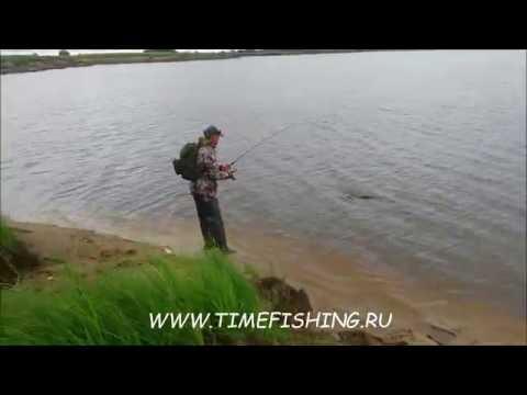 Проститутки Новокузнецка : Проститутки - доступный интим