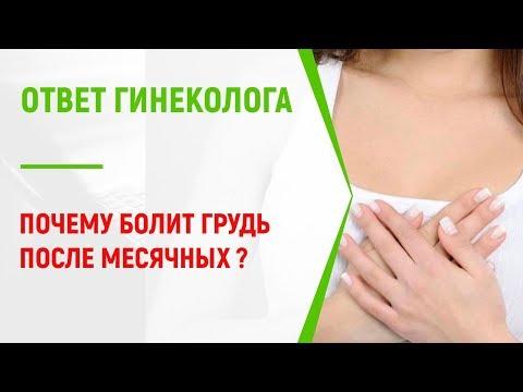 После месячных болит грудь причины