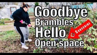 How To Clear Brambles Fast: New Allotment Plot (part 1)