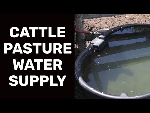 CATTLE PASTURE WATER SUPPLY