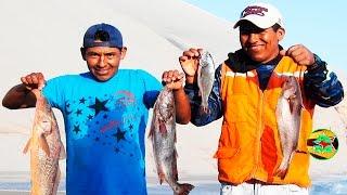 #Pescando lorna con Linia De Mano