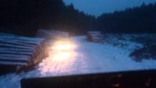 Dojazd do zrębu w lesie