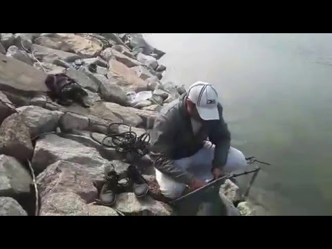 Fishing at Madhav Reddy Dam