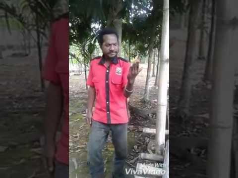 Mop Papua
