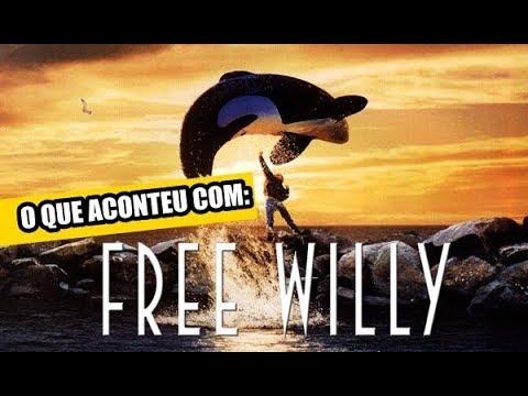 Free Willy 1 Ganzer Film Deutsch