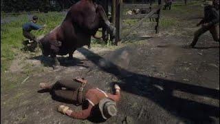 Самый злой бык в RDR2