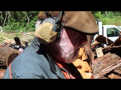 How to Carve a Wooden Bear