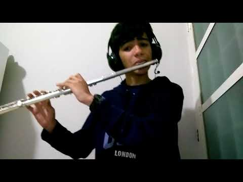 Funk Das Winx - Flauta Transversal