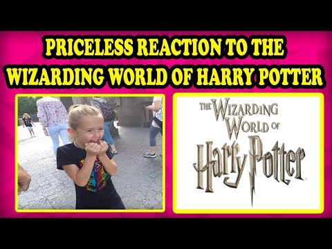 Priceless Reaction to the Wizarding World of Harry Potter at Universal Studios Orlando