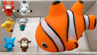 목욕 물놀이 튜브 동물장난감을 물속에서 가지고 놀아요.…
