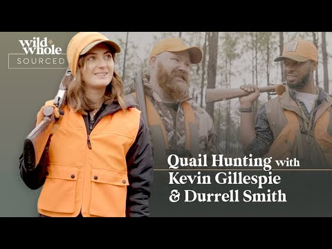 Download Quail Hunting with Kevin Gillespie and Durrell Smith | S1E03 | Sourced