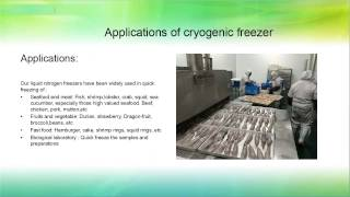 Cryogenic freezer for food industry