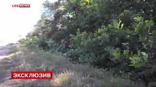 видео разгрома карательного батальона 'Айдар'