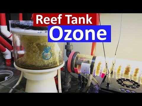Reef Tank Ozone - Crystal Clear Water In The Marine Aquarium Using A Ozone Generator