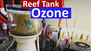 Reef Tank Ozone - Crystal Clear Water in The Marine Aquarium using a ozone generator