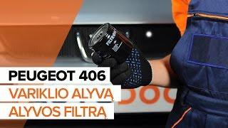Kaip pakeisti variklio alyvą ir alyvos filtrą PEUGEOT 406 PAMOKA | AUTODOC