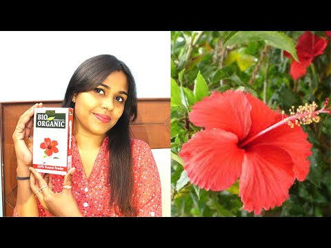 How To Use Hibiscus Powder For Hair And Skin Youtube