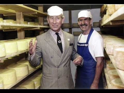 Hard Cheese making with cows raw milk (unpasteurized) Pembrokeshire near Fishguard Wales UK